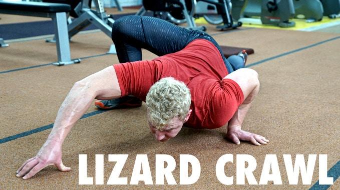 lizard crawl movements
