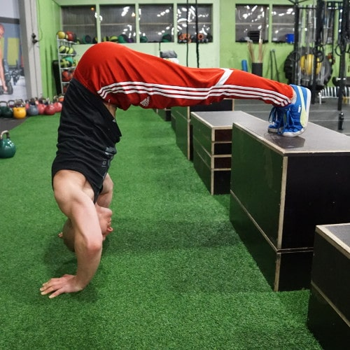 supported handstand push up