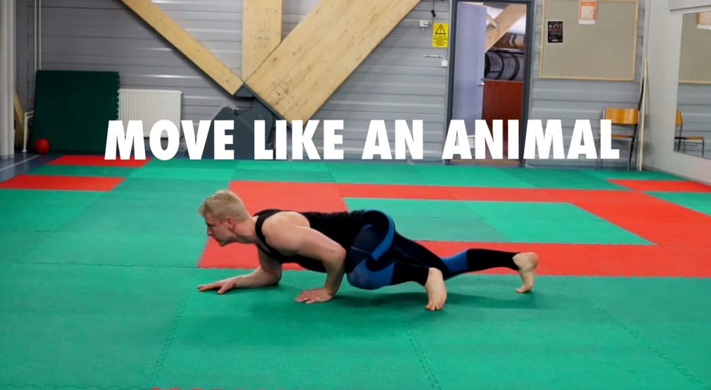 move like an animal