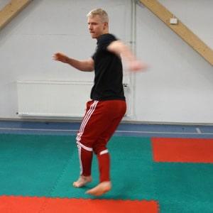 queixada capoeira kick