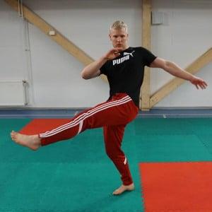 capoeira frente kick