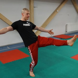 Basic Movement Flow And 5 Capoeira Kicks Anyone Can Learn ...