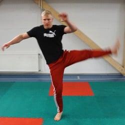 how to do armada capoeira