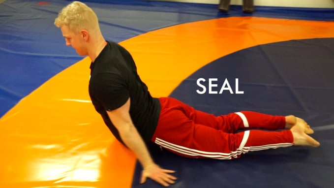 seal crawl exercise