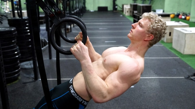inverted rows for back
