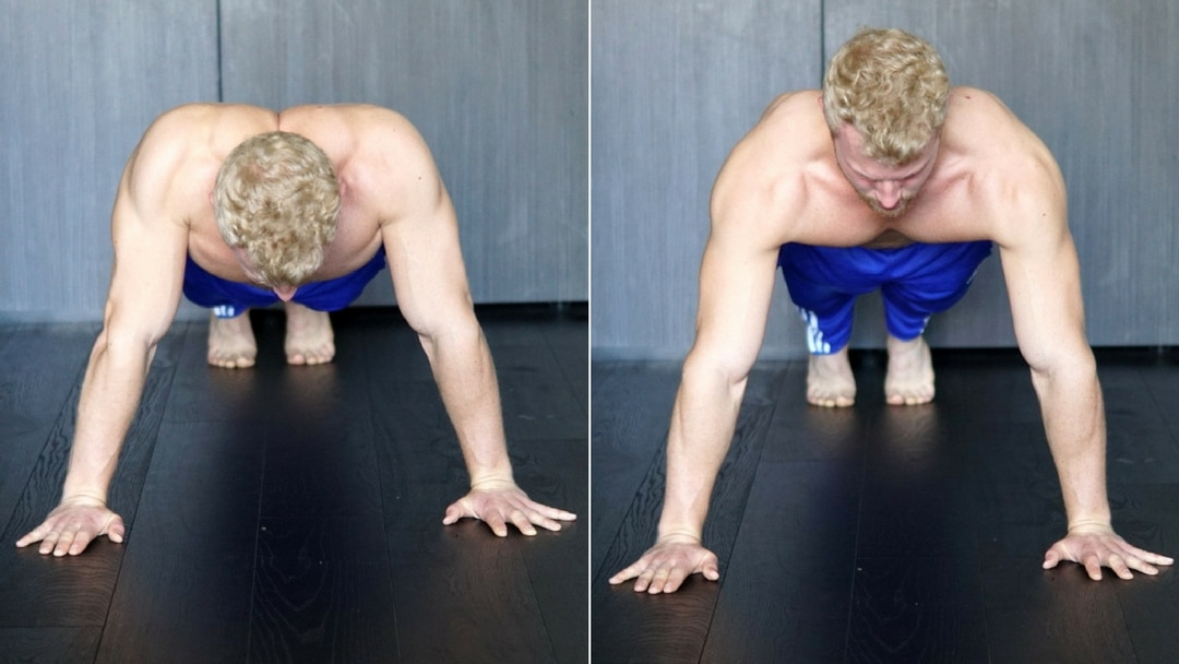 scapula protraction from push up stance
