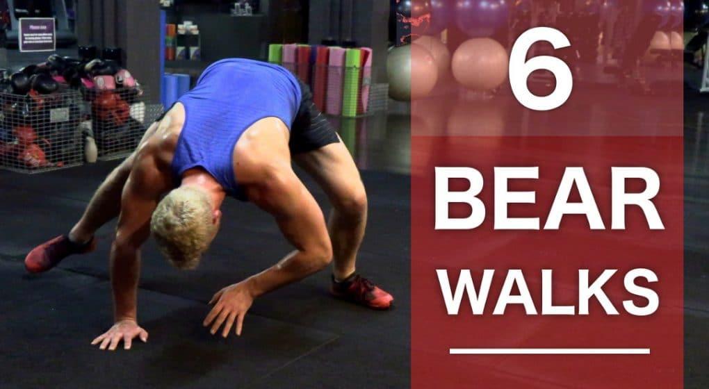 bear walk variations bear walk mobility strength movement drill