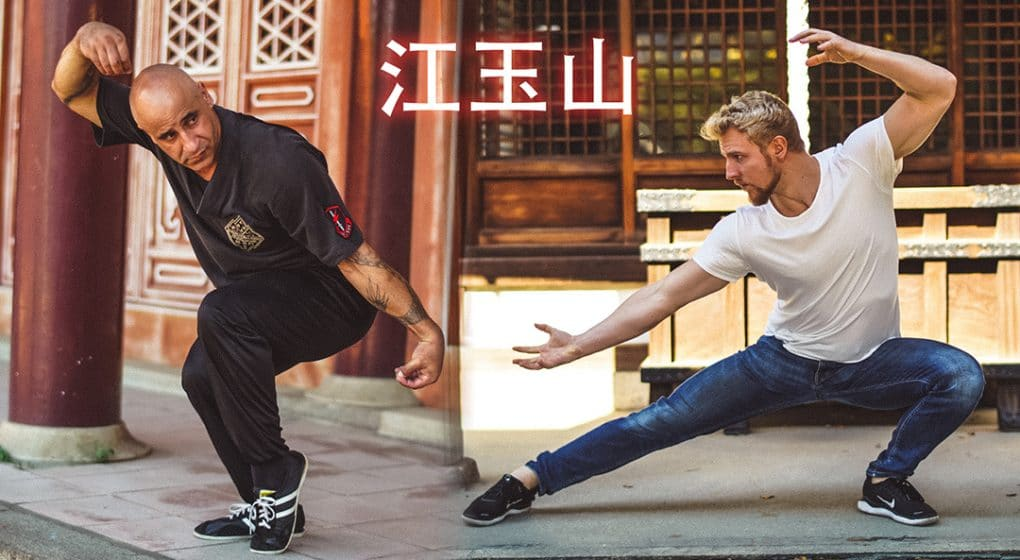 Real Chinese Kung Fu Monkey Kung Fu