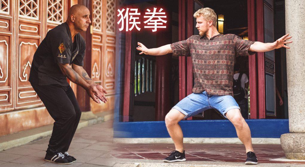 monkey kung fu internal kung fu soft kung fu