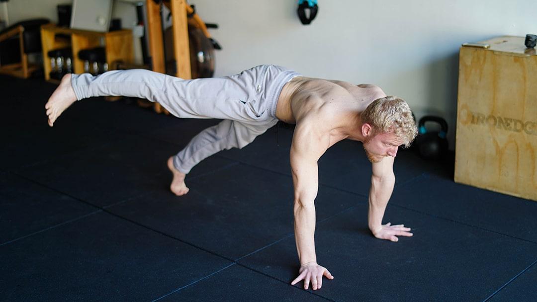 plank leg swipe exercise for obliques