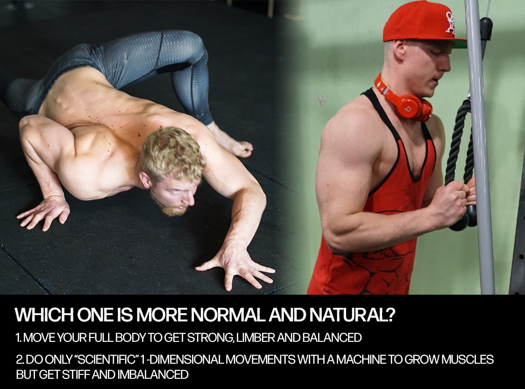 natural training vs. mainstream training