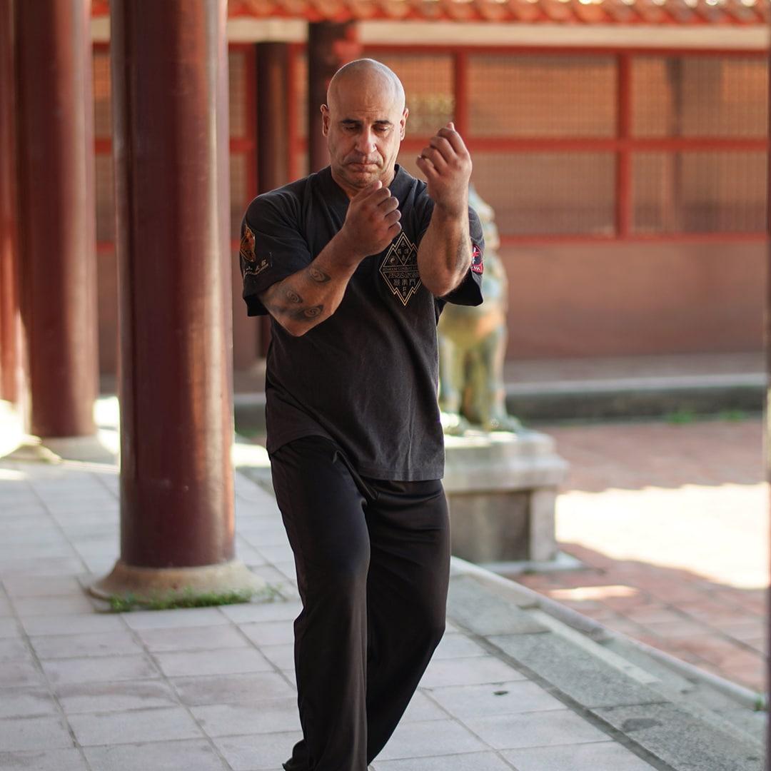 kung fu hou quan tai shin mun practice
