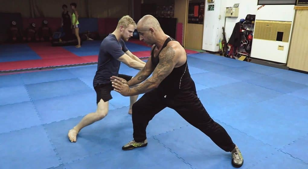 monkey kung fu tai shin mun combat applications