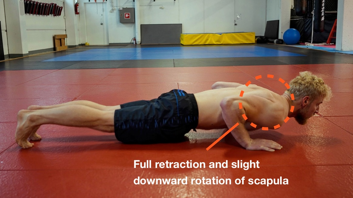 full retraction and downward rotation of scapula