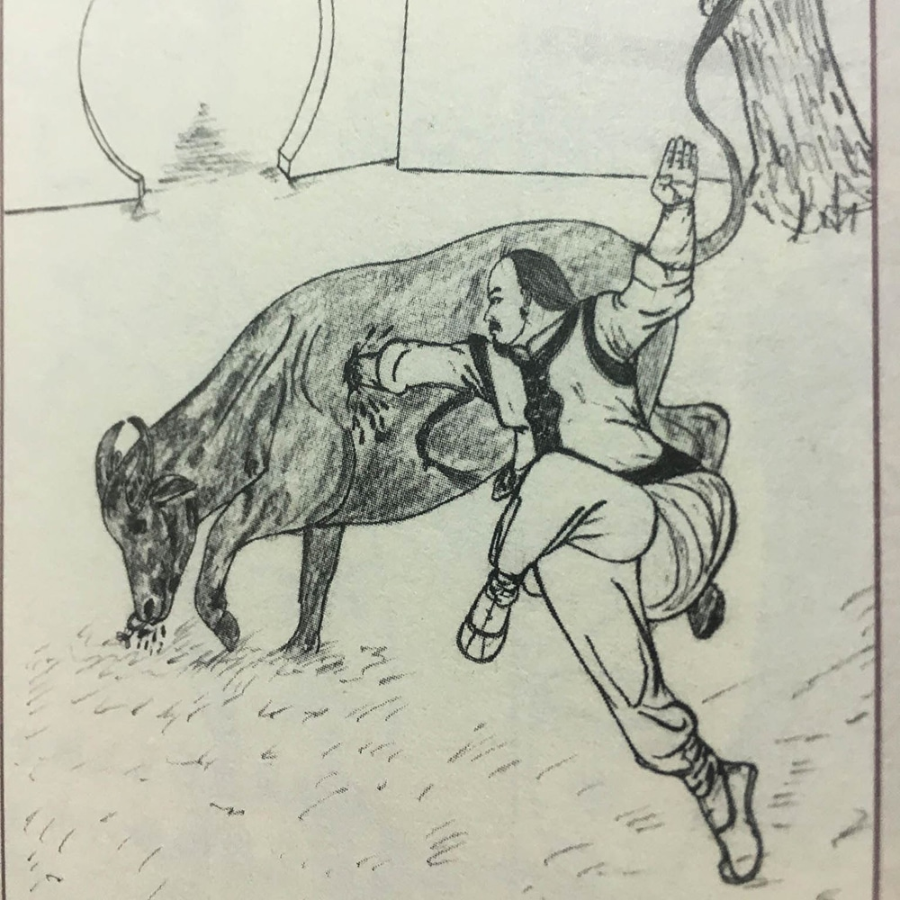 Shaolin monk attacking a cattle
